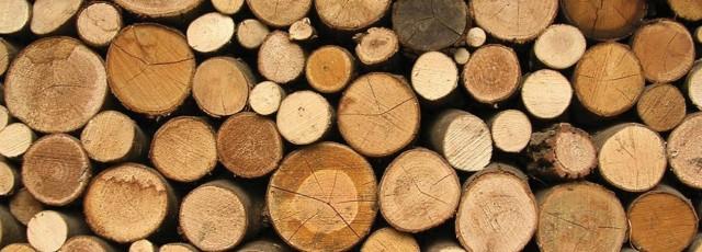 Pine Oak Meranti
